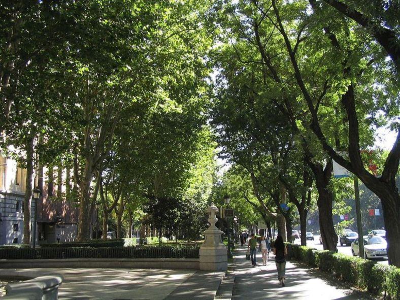 800px-Paseo_del_Prado_(Madrid)_02