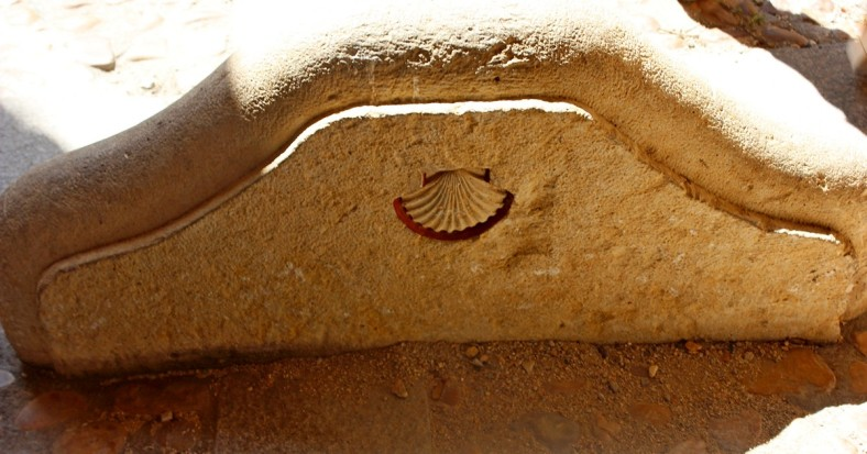 SCALLOP SHELL SYMBOL OF THE CAMINO SANTIAGO